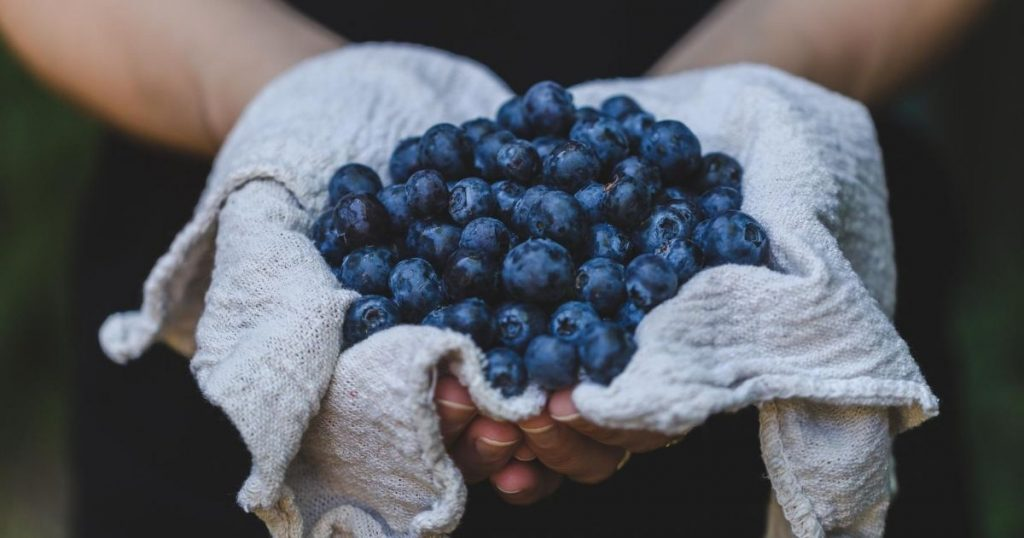 blueberries for healthy smoothie recipe